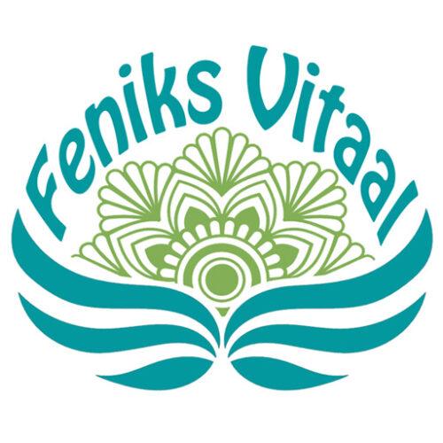 Feniks Vitaal Logo Favicon